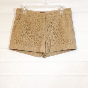Cynthia Rowley Size 4 Taupe Lace Shorts